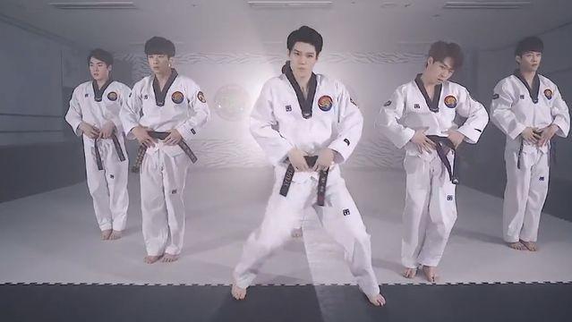 Blood Sweat & Tears (Taekwondo Version) - BTS (Bangtan Boys