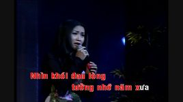 me toi (karaoke) - thuy duong