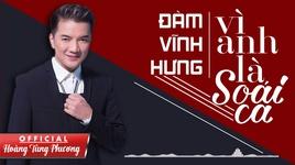 vi anh la soai ca (audio version) - dam vinh hung