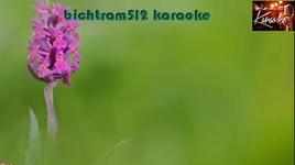 hoa tim luc binh karaoke - giao tien