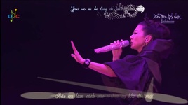 da tung dau long / 曾经心疼 (vietsub + kara) - diep thien van (sally yeh)