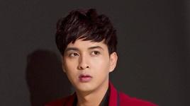 canh hong phai (karaoke) - ho quang hieu