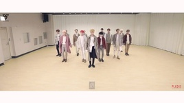 i'm wearing a hat (choreography video) - seventeen