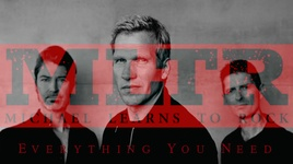 everything you need (lyric video) - michael learns to rock