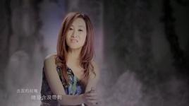 hoa hong da tinh / 多情玫瑰 - truong dung dung (zhang rong rong)