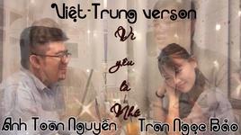 vi yeu la nho (chinese version) cover - tran ngoc bao, anh toan nguyen