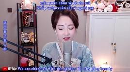 nu nhi tinh / 女儿情 (cover + vietsub) - phung de mac