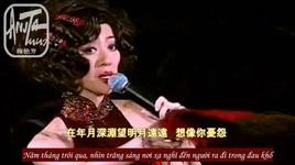 ngo nguoi xua den 似是故人來 (anita classic moment live concert 2003) (vietsub) - mai diem phuong (anita mui)