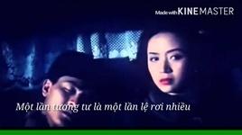 mot chut tuong tu / 一点相思 (vietsub) - mai diem phuong (anita mui)