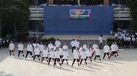 flashmob dinh cao la day (lop 11a17 thpt phu nhuan) - v.a