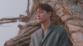 beautiful goodbye - chen (exo)