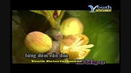 hoa co vang noi ay (karaoke) - dam vinh hung