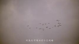 tat ca khong ngoanh lai / 不顧一切 - tran di dinh (anita chen)