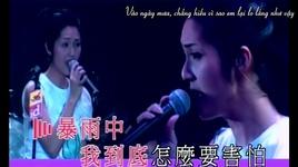 neu de em tiep tuc noi / 假如让我说下去 (vietsub) - duong thien hoa (miriam yeung)