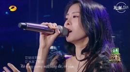 kep ho dao / 胡桃夾子 (live) (the singer 2017) (vietsub) - truong bich than (zhang bi chen)