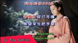 nguyen vi anh quy sau ngan nam / 愿为你跪六千年 (vietsub, kara) - tich quy (ji ji)