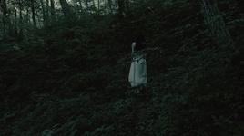 in the dark woods - akira kosemura