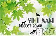 tong hop nhac viet hot 2011 - v.a