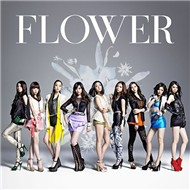 forget-me-not - wasurenagusa (single) - flower