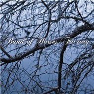factory (single) - band of horses