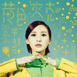 yellow jacket - luong van am (rachel liang)