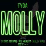 molly (single) - tyga