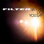 what do you say (single) - filter