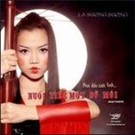 phai dau cuoc tinh... nuoi tiec mot bo moi (tinh music platinum vol. 44) - la suong suong