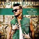 i'm feeling good (remixes ep) - ardian bujupi