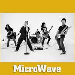 greatest hits - microwave