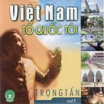 viet nam to quoc toi (vol. 1) - trong tan