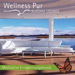 buddha lounge - meditative entspannungsmusik - wellness pur