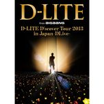 d-lite d'scover tour 2013 in japan - dlive - dae sung (bigbang)