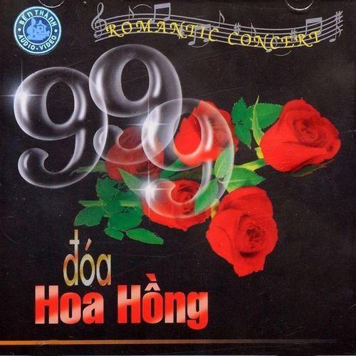 Nhạc Không Lời - 999 Đoá Hoa Hồng (Romantic Concert)