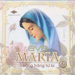 ave maria vang trang tu bi (vol.8 - 2008) - gia an (hat thanh ca)