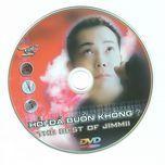 hoi da co buon khong (tinh music) - jimmii nguyen