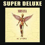 in utero - 20th anniversary (super deluxe) - nirvana