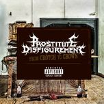 from crotch to crown - prostitute disfigurement