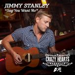 say you want me (single) - jimmy stanley