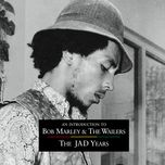 an introduction to bob marley & the wailers: the jad years - bob marley, the wailers