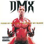 flesh of my flesh, blood of my blood - dmx