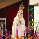 Album Thánh Ca Hay Nhất Về Đức Mẹ - Diệu Hiền, Mai Thiên Vân, Ca Đoàn Trinh Vương, Gia Ân (Hát Thánh Ca), Phan Đình Tùng
