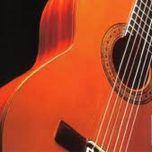 hoa tau acoustic moods (guitar) - v.a