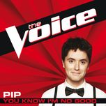 you know i'm no good (the voice perfomance) (single) - pip