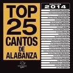 top 25 cantos de alabanza - v.a