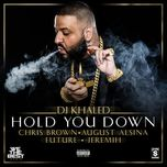 hold you down (single) - dj khaled, chris brown, august alsina, future, jeremith