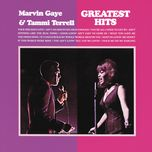 greatest hits - tammi terrell, marvin gaye