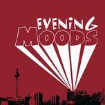 evening moods - v.a