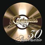 30 aniversario - cardenales de nuevo leon