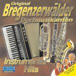 instrumental hits - original bregenzerwalder dorfmusikanten